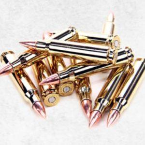 G&G 怪怪 5.56mm 步槍子彈造型磁鐵 裝飾彈 P-09-002